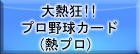 大熱狂!!プロ野球カード(熱プロ)  RMT